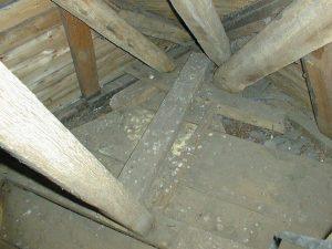 Detail vom Dach